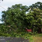 06-26-2017, Storm Damage, Vineland, Marshall Ave  and David Ave  (C) Edan Davis, www sjfirenews (12)