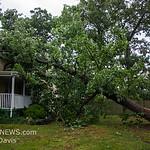 06-26-2017, Storm Damage, Vineland, Marshall Ave  and David Ave  (C) Edan Davis, www sjfirenews (2)