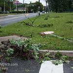 06-26-2017, Storm Damage, Vineland, Marshall Ave  and David Ave  (C) Edan Davis, www sjfirenews (5)