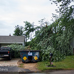 06-26-2017, Storm Damage, Vineland, Marshall Ave  and David Ave  (C) Edan Davis, www sjfirenews (9)