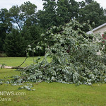 06-26-2017, Storm Damage, Vineland, Marshall Ave  and David Ave  (C) Edan Davis, www sjfirenews (10)